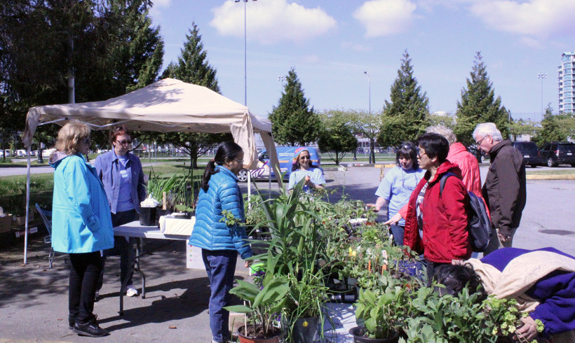 Recap | Richmond Shares Plant & Seeds Sale Fundraiser (May 2014)